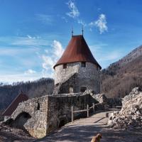 Zadnja leta poteka obnova gradu Žovnek tudi ob pomoči Občine Braslovče.