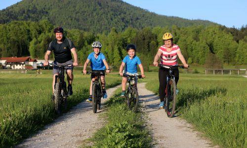 Mobilnost: Razcvet kolesarjenja v Sloveniji