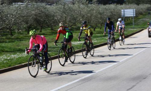 Varno sožitje kolesarjev in avtomobilistov