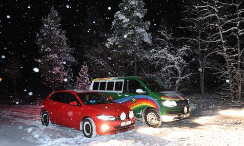 AMZS test 31 zimskih pnevmatik v dveh dimenzijah