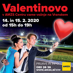 AMZS Valentinov program